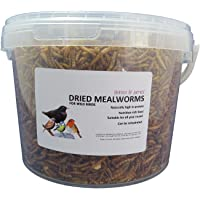 Britten & James - Dried Mealworms Gusanos secos. Comida para las aves silvestres. 2 litros. Tubo sellado
