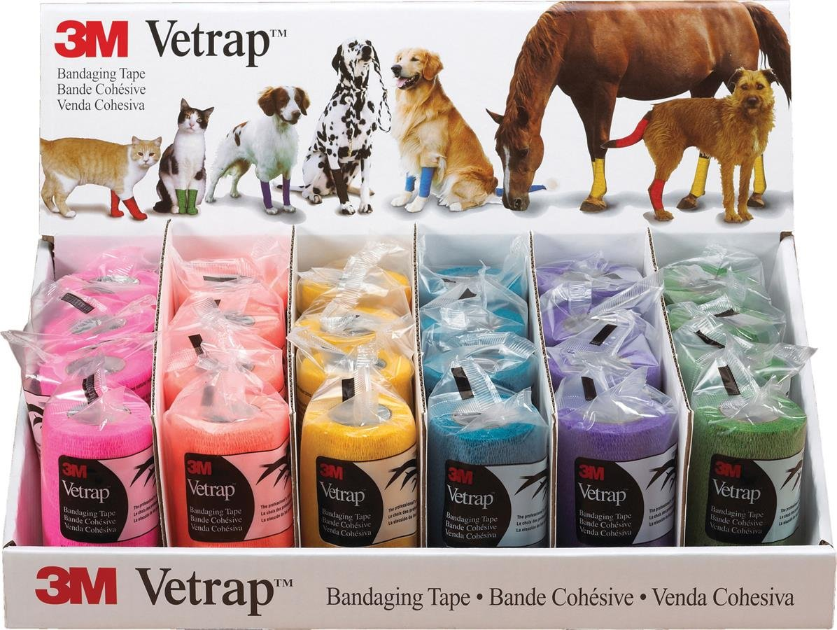 3M 817538 24 Piece Vetrap Bandaging Assorted Bright Tape Display by 3M
