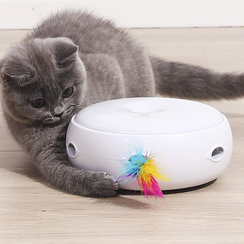 HAPPY HACHI Juguetes Gatos Interactivos con 2 Plumas Apagado Automático 3 Modos de Conmutación Pluma Fácil Reemplazo per Ejercicio Entretenimiento Baterias Incluidas