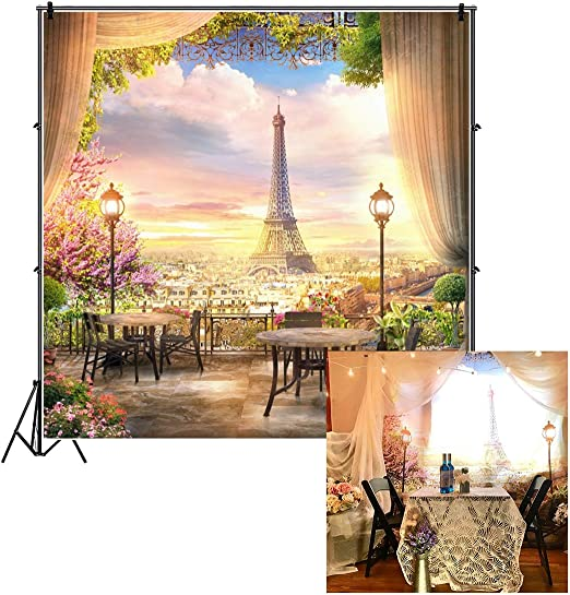 Paris 8x10 FT Photo Backdrops,Abstract City Image Violin Cat with Bow Tie Eiffel Tower Illustration Background for Baby Shower Bridal Wedding Studio Photography Pictures Pale Pink Scarlet White
