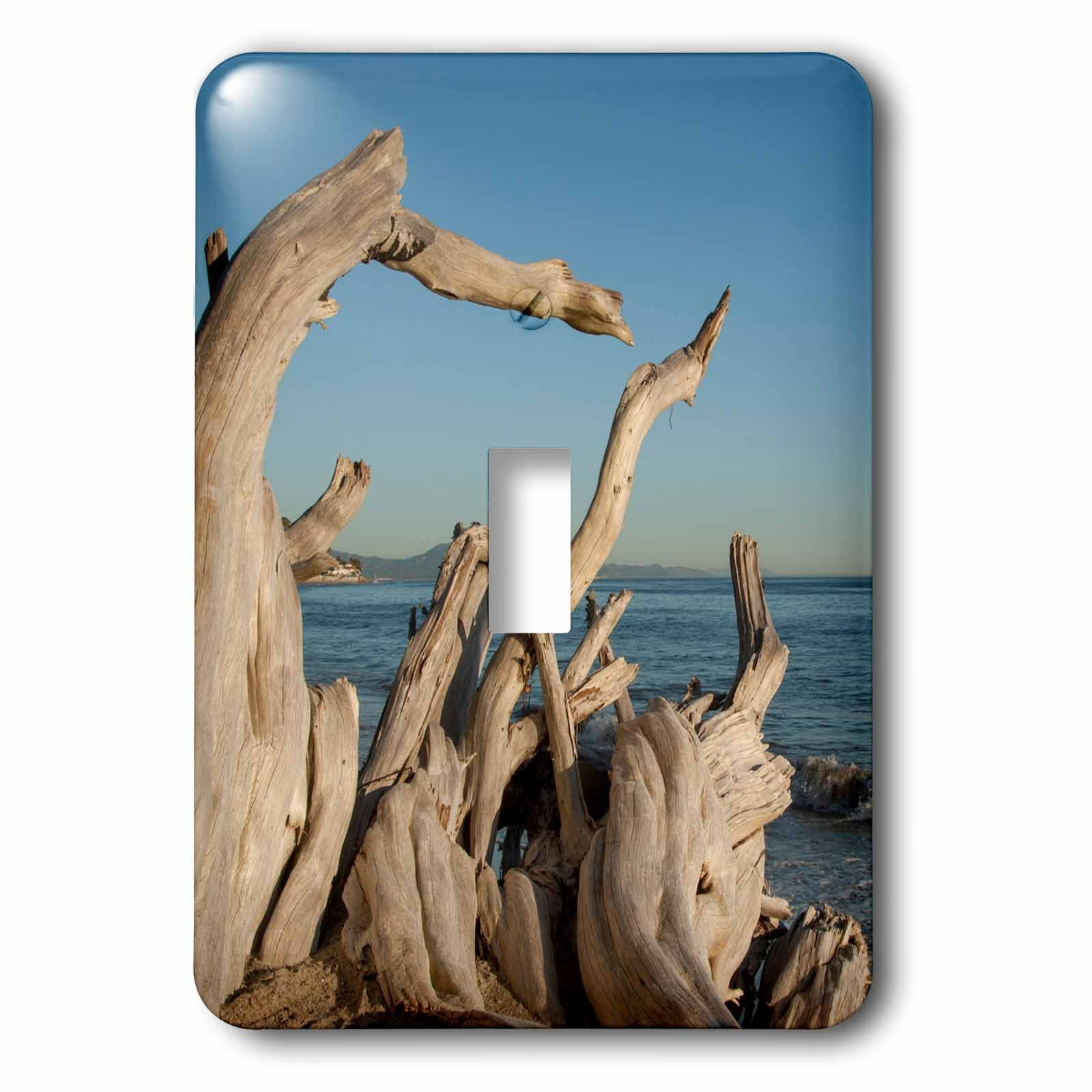 3dRose LSP_229819_1 USA, California, Santa Barbara, Montecito, Butterfly Beach, Driftwood Toggle Switch, Mixed by 3dRose