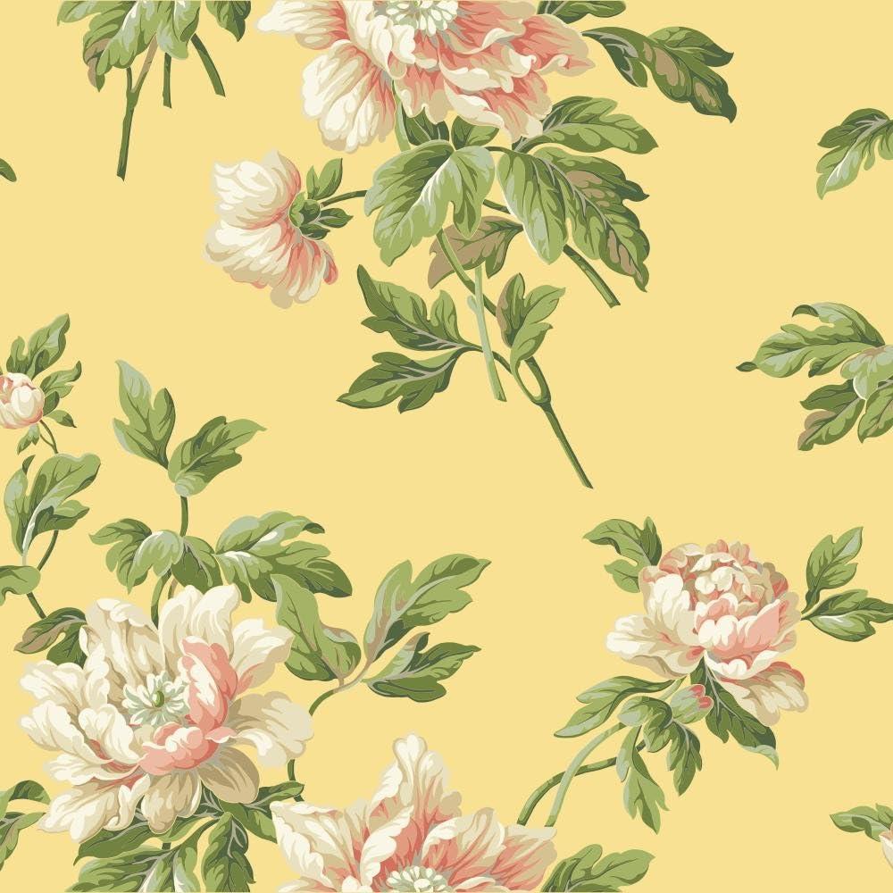 Amazon Com York Wallcoverings Ba4614 Casabella Ii Document Floral