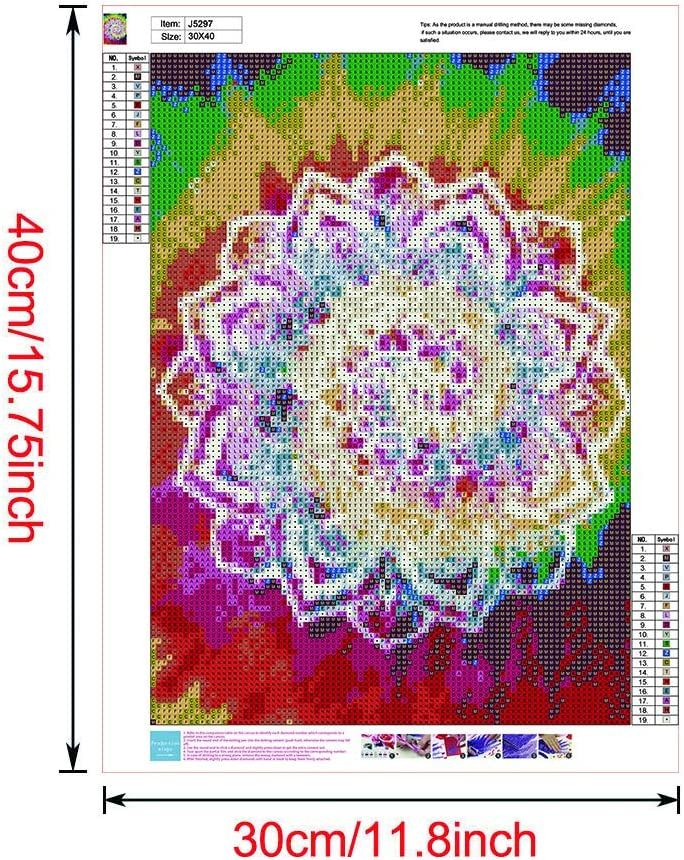 DIY Cross Stitch Crystal Mosaic Picture Artwork for Home Wall Decor Gift 5D Diamond Painting Kits for Adults Datura Flowers feilin Special Shape G, 30X30cm