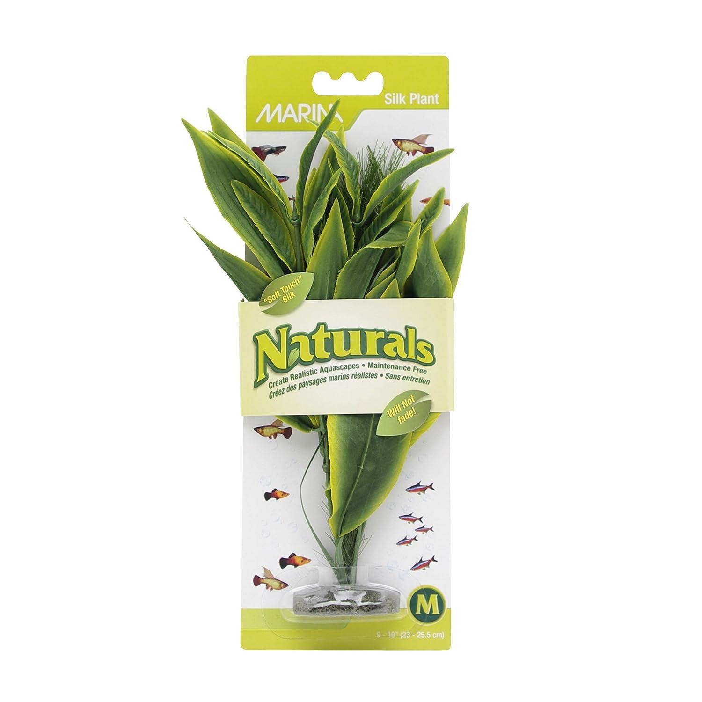(Medium) Marina Naturals Green Dracena Silk Plant