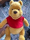Fake Pooh?