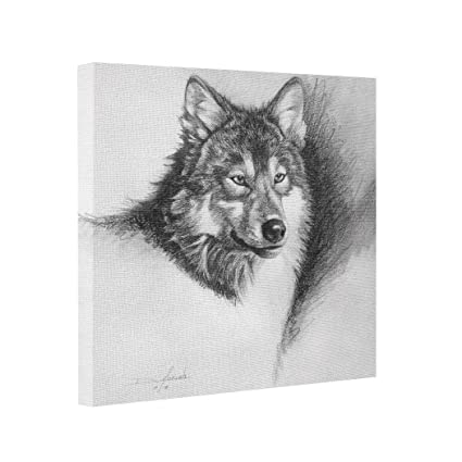 Amazon Com Maliestway Drawing Abstract Art Canvas Wolf