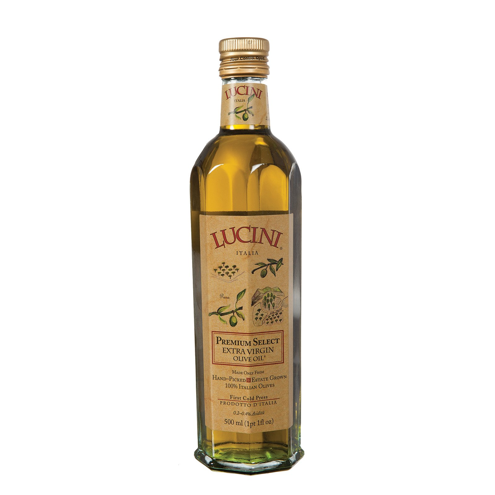 Lucini Extra Virgin Olive Oil, Premium Select, 16.9-Ounce, Glass Bottle