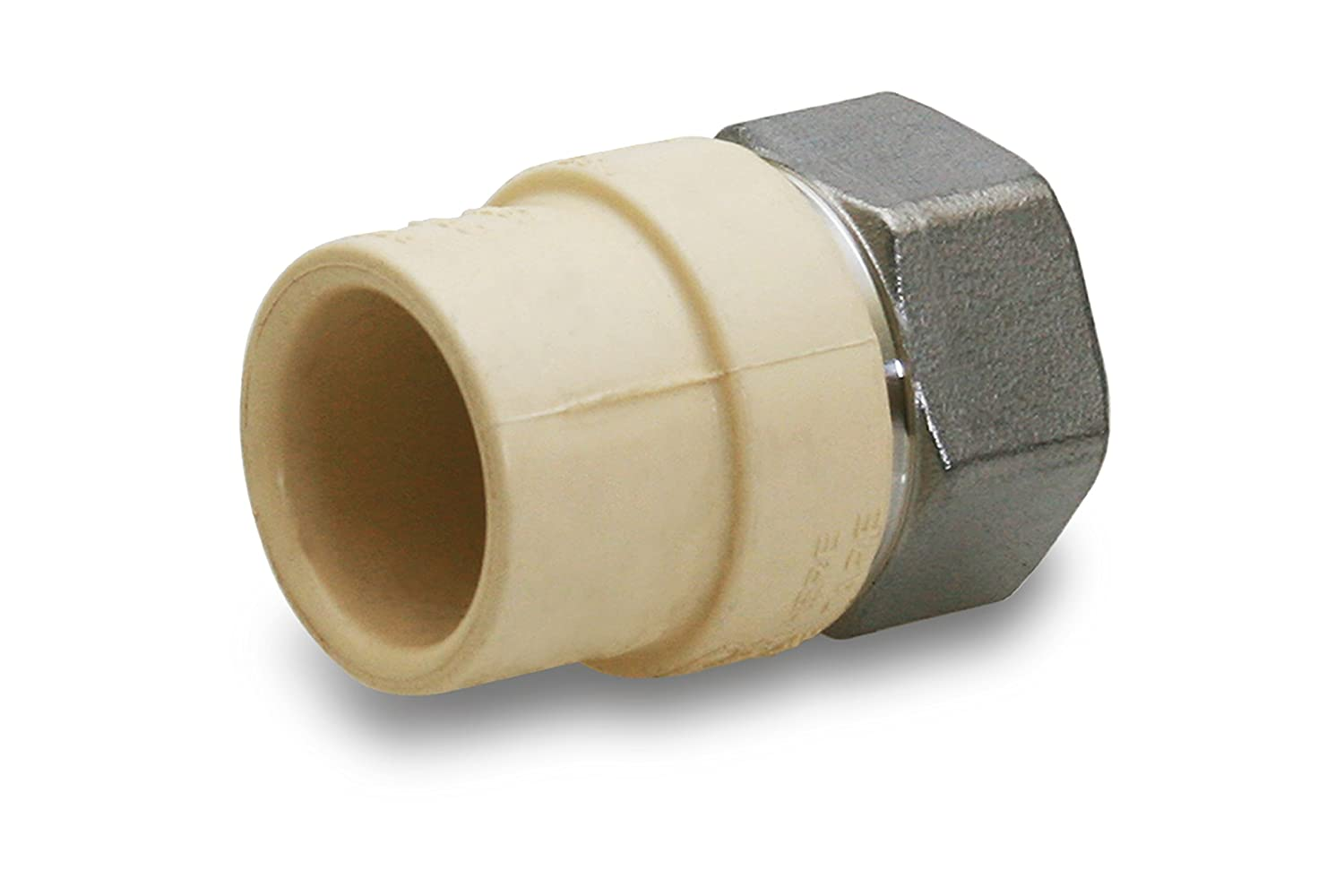 Everflow Supplies SSCPF034-NL 3//4 Lead Free Transition Fitting with a Stainless Steel Female Threaded and with a CPVC Connection