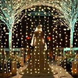 【水中にも適用】AGPtEK 3M×3M/300 LEDカーテンライト USB給電式 8 点滅パターン結婚式、学園祭、誕生会、ハロウィーン、クリスマスパーティー、バレンタインデー、記念日などイベント大活躍 防水国際基準防水IP67 LEDイルミネーションライト コントローラ付き 日本語取扱説明書 (ウォームホワイト)