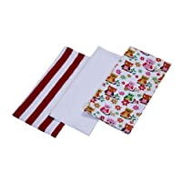 Homescapes - Pure Cotton Tea Towels Set of Three - Owls - Red Blue - 18 x 32 cm - Fully Coordinated Washable Kitchen Linen