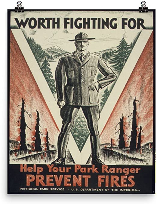 NATIONAL FOREST SERVICE FIRE PROPAGANDA POSTER PAINTING REAL CANVASART PRINT