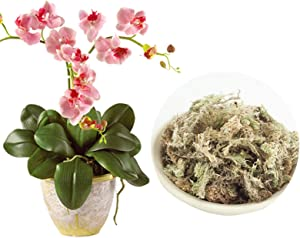 HONUTIGE Sphagnum Moss Natural Water Moss Dried Water Grass Substrates Organic Fertilizer for Orchid Phalaenopsis Garden Supplies