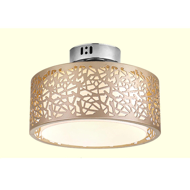 Led-licht Led Nordic Eisen Aluminium Acryl Minimlism Led-lampe Led-deckenleuchte Decke Lampe Für Foyer Schlafzimmer Deckenleuchten