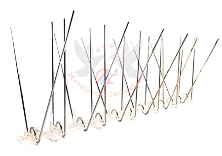 BIRD-X India Bird Spike 10 pcs Pack- 13 Running Ft