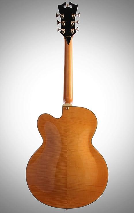 D angelico exl-1 guitarra de cuerpo hueco, para guitarra ...