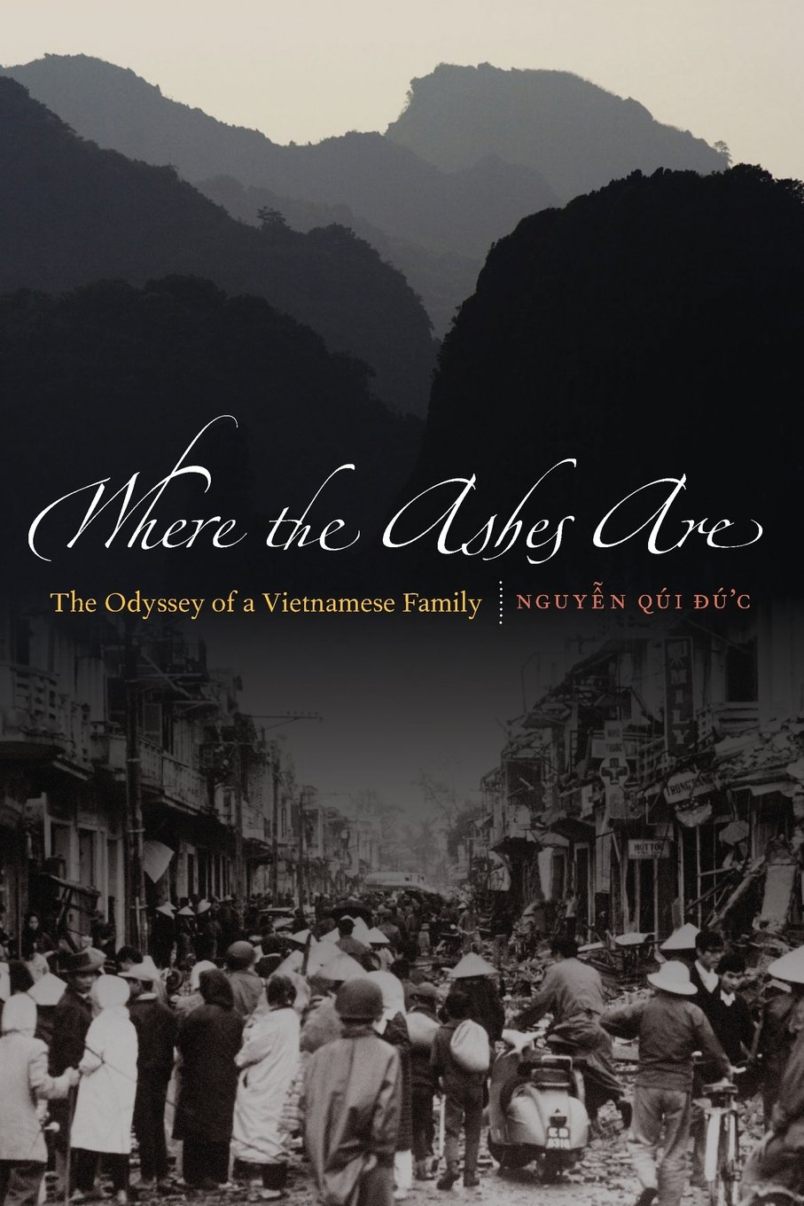Amazon where the ashes are the odyssey of a vietnamese amazon where the ashes are the odyssey of a vietnamese family 9780803226982 qui duc nguyen books fandeluxe Gallery