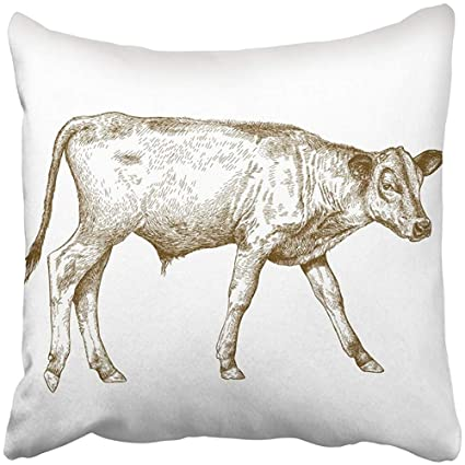 Amazon com: Throw Pillow Cover Square 18x18 Inches Cow