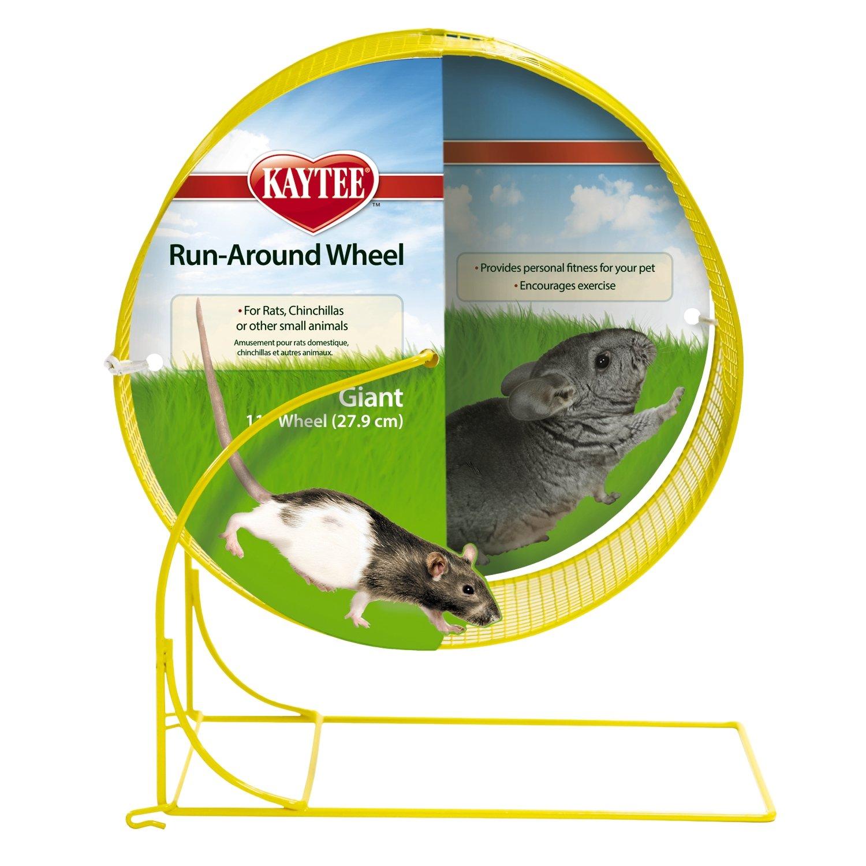 Kaytee Run-Around Exercise Wheel, 11''