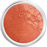 Mineral Blush Makeup | Rich Girl | Mineral Blush Makeup Powder, Giselle Cosmetics | Pure, Non-Diluted Mineral Make Up -Mineral Makeup Powder, Foundation, Concealer, Eye Shadow, Blush, and Contouring