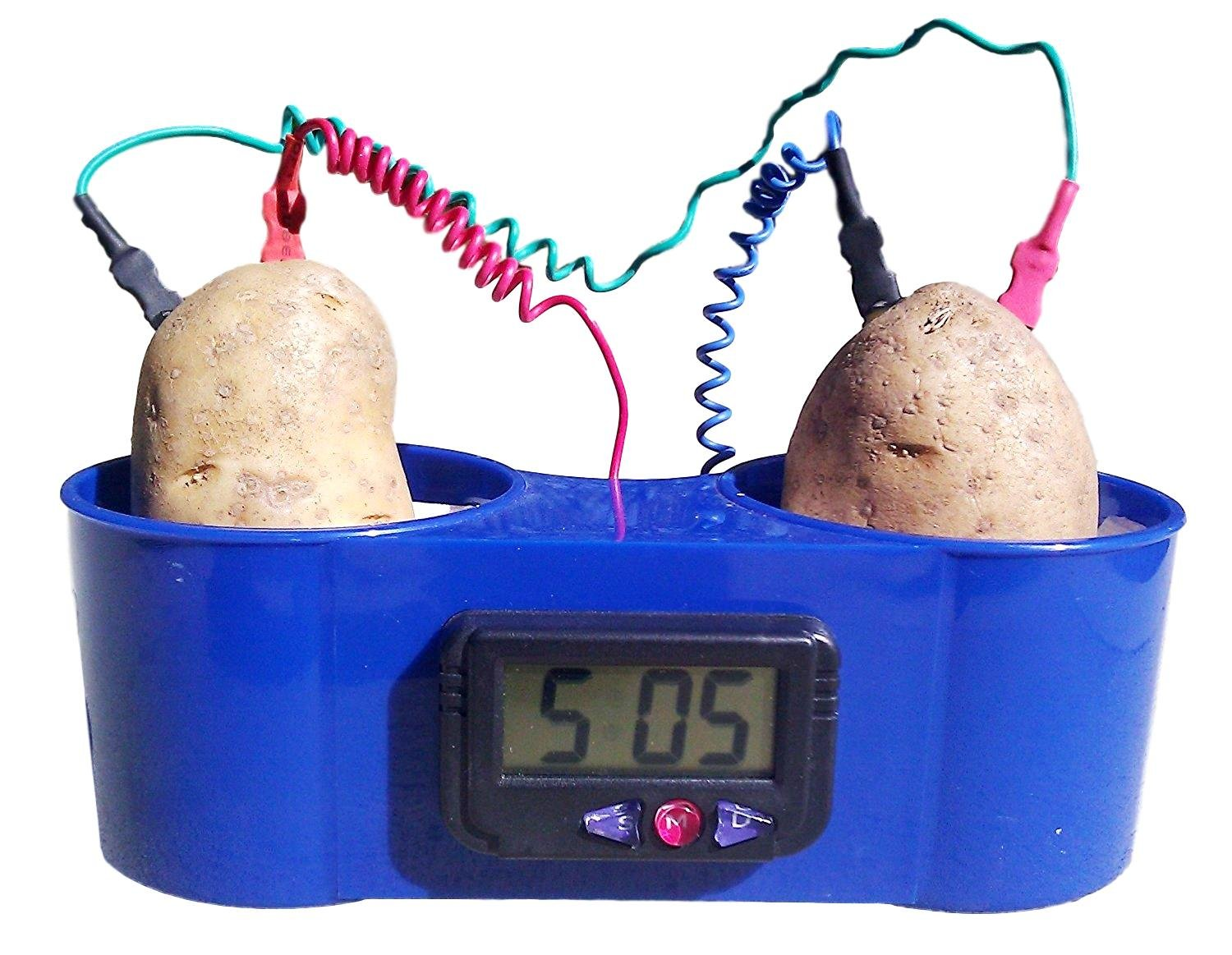 Potato Clock with No Mess Holder, Fruit Clock by Sci-Supply