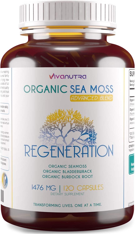 Irish Sea Moss Organic Bladderwrack Burdock Root 120 Capsules - Wildcrafted Seamoss Raw Organic Herb Cell Health Irish Moss Powder Gel Pills - Alkaline Supplements Vegan Super Food - 2 Month Supply
