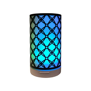 KOKO AROMA Aromatherapy Essential Oil Diffuser Humidifier: Iron Cover Metal Infuser 120mL Ultrasonic Mist Maker and Air Defuser with 7 Color LED NightLights and Auto Shut-Off for Home Office Bedroom