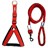 Petshop7 Nylon Padded Adjustable Dog Harness & Leash Rope for Large Pet (Red, 1.25 Inch, Chest Size : 33-42)
