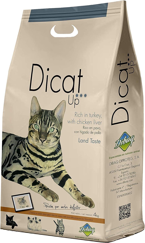 Dibaq Alimento Completo Extrusionado para Gatos - 3000 gr: Amazon ...