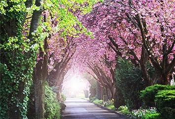 Amazon Com Aofoto 7x5ft Beautiful Spring Scenery Backdrop