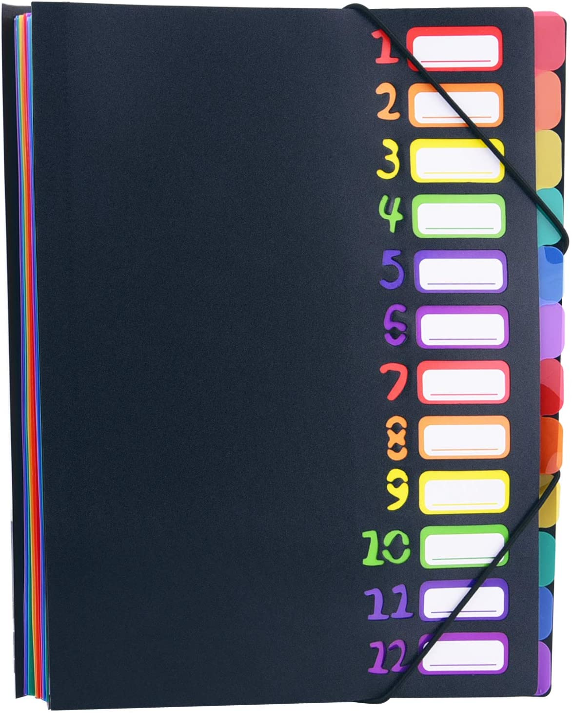 Livder Expanding File Folders, 12 Pocket Letter A4 Paper Project Sorter Plastic Document Organizer