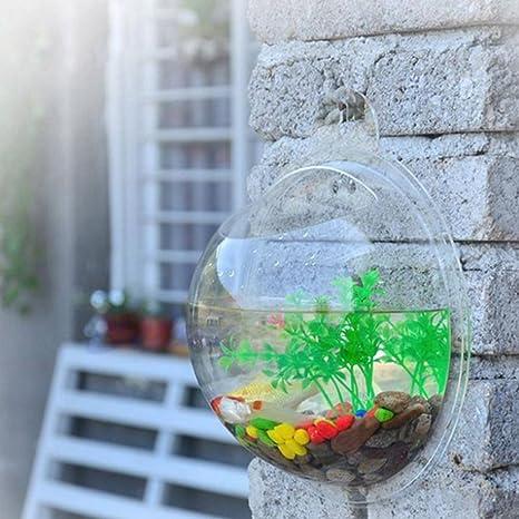 LYFF - Jarrón de acrílico transparente para colgar en la pared para acuario, bola de