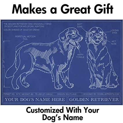 Amazon golden retriever blueprint with personalized dog name golden retriever blueprint with personalized dog name makes a great gift unframed art poster malvernweather Image collections