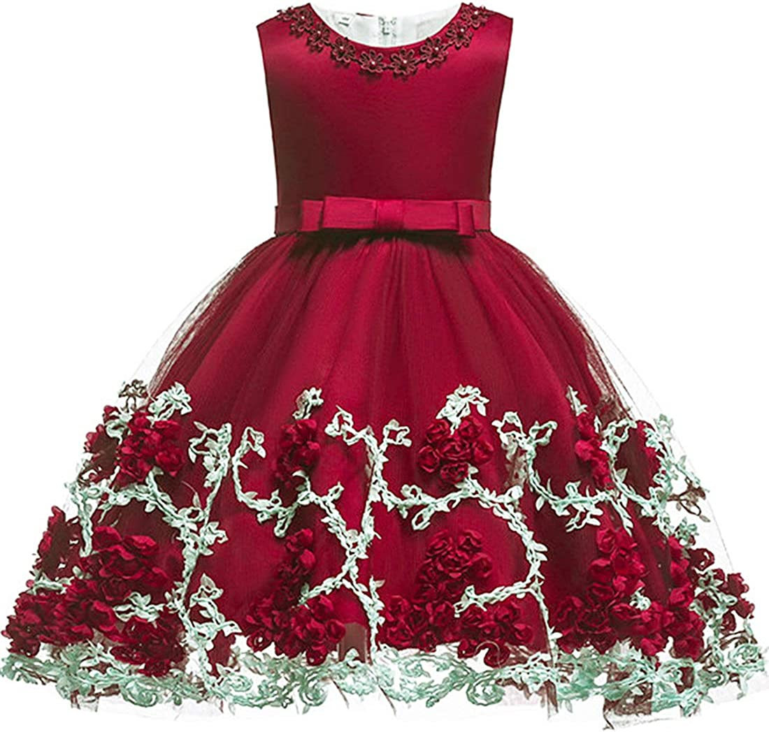 Baby Girls Flower Dress Wedding Party Toddler Dress Birthday Special Occasion Girls Dress