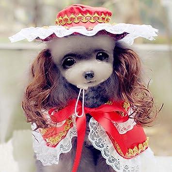 Amazon.com: Buyitnow lindo mascota ropa para perro pequeño ...