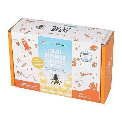 Amazon.com: Fat Brain Toys Surprise Ride - Kit de ...