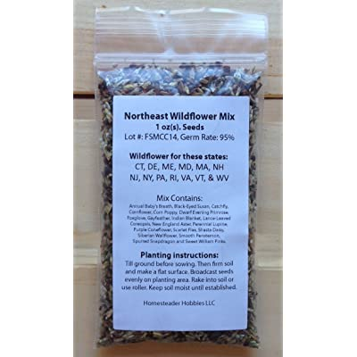 New Hampshire Wildflower Seed Mix, 1 Ounce : Garden & Outdoor