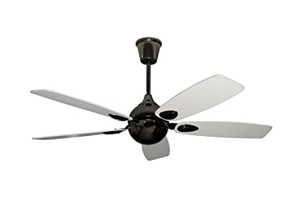 Buy fanzart penguin dual toned modern ceiling fan online at low fanzart penguin dual toned modern ceiling fan mozeypictures Choice Image