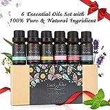 Luckyfine Aceites Esenciales para Humidificador, 100% Natural, Perfume de Aromaterapia - Ayuda a Dormir, Calma el Estado de Ánimo - Regalo Ideal para Todas Ocasiones, 6 Olores Diferentes 6 x 10 ml