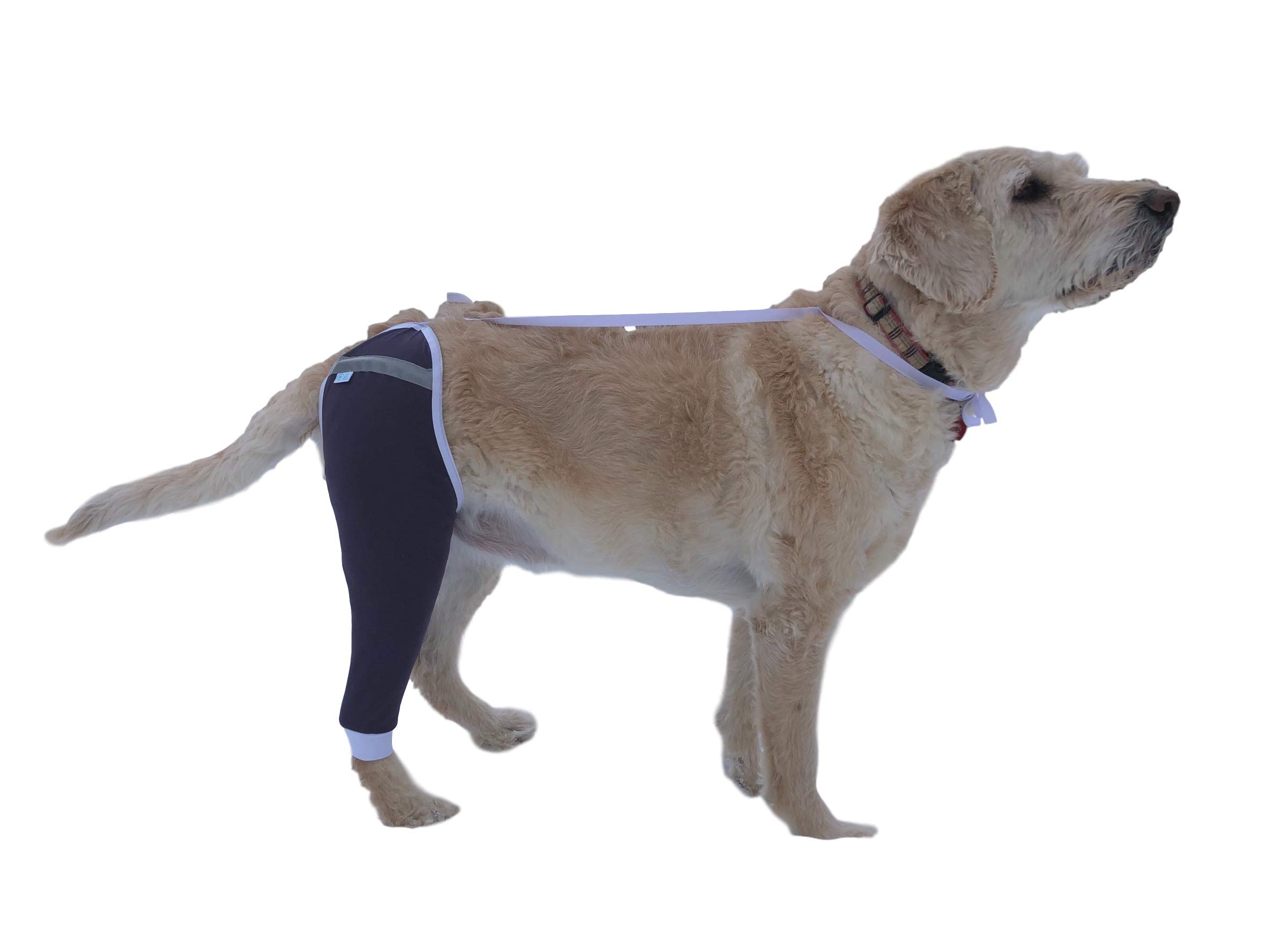 After Surgery Wear Hip and Thigh Wound Protective Sleeve for Dogs. Dog Recovery Sleeve. Recommended by Vets Worldwide (X-Large, Purple) by After Surgery Wear