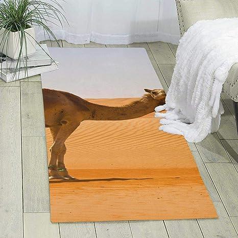 Amazon.com: Kjaoi Carpet 70