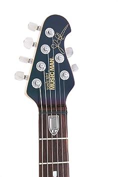 Ernie Ball música hombre John Petrucci 6 guitarra eléctrica, Mystic sueño: Amazon.es: Instrumentos musicales