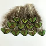 Sowder 20pcs Gold/Green Peacock Pheasant Plumage Feathers 1-4 Inches for Home Wedding Decoration