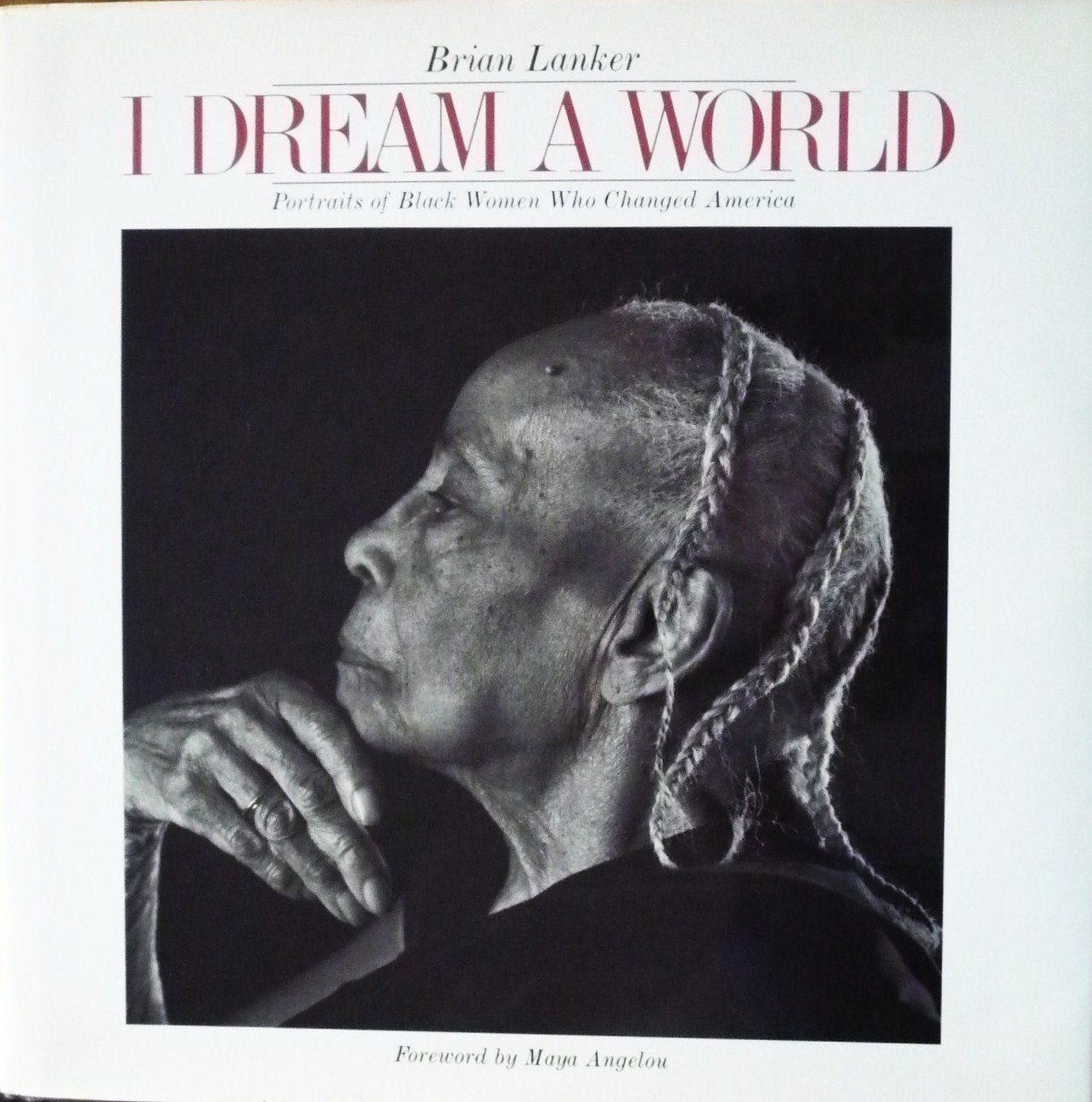 Dream World Portraits Changed America product image