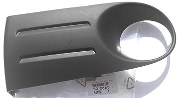 Xsara Picasso parte inferior delantera izquierda niebla lámpara luz parachoques bisel embellecedor de rejilla Genuine 7452