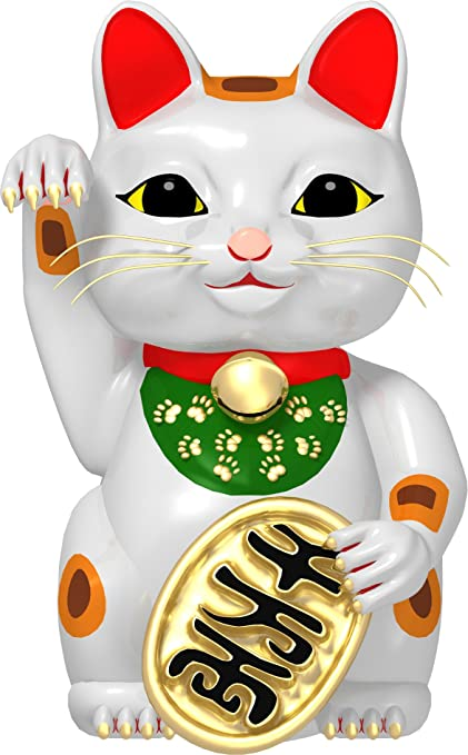 clip Asian kitty