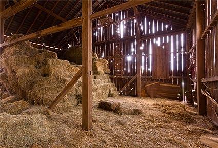 RBabyPhoto 10X7FT Weste Cowboy Old Barn Backdrop Farmland Straw Haystack Rustic Stripes Wood Plank Autumn Photography