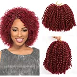 "BeautyGrace Pack of 3 Marlybob Crochet Braids Hair Ombre Afro Kinky Curly Braiding Hair Extensions for Girl Women(8"", bug)"