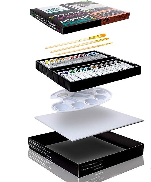 Morgico Pinturas Acrílicas para Pintar Set Professional para Pintores Expertos y Pintores Aficionados Ricas en Pigmentos Vibrantes y Fluidos Caja con 24 Tubos 3 Pinceles 1 Paleta 1 Lienzo Estirado: Amazon.es: Hogar