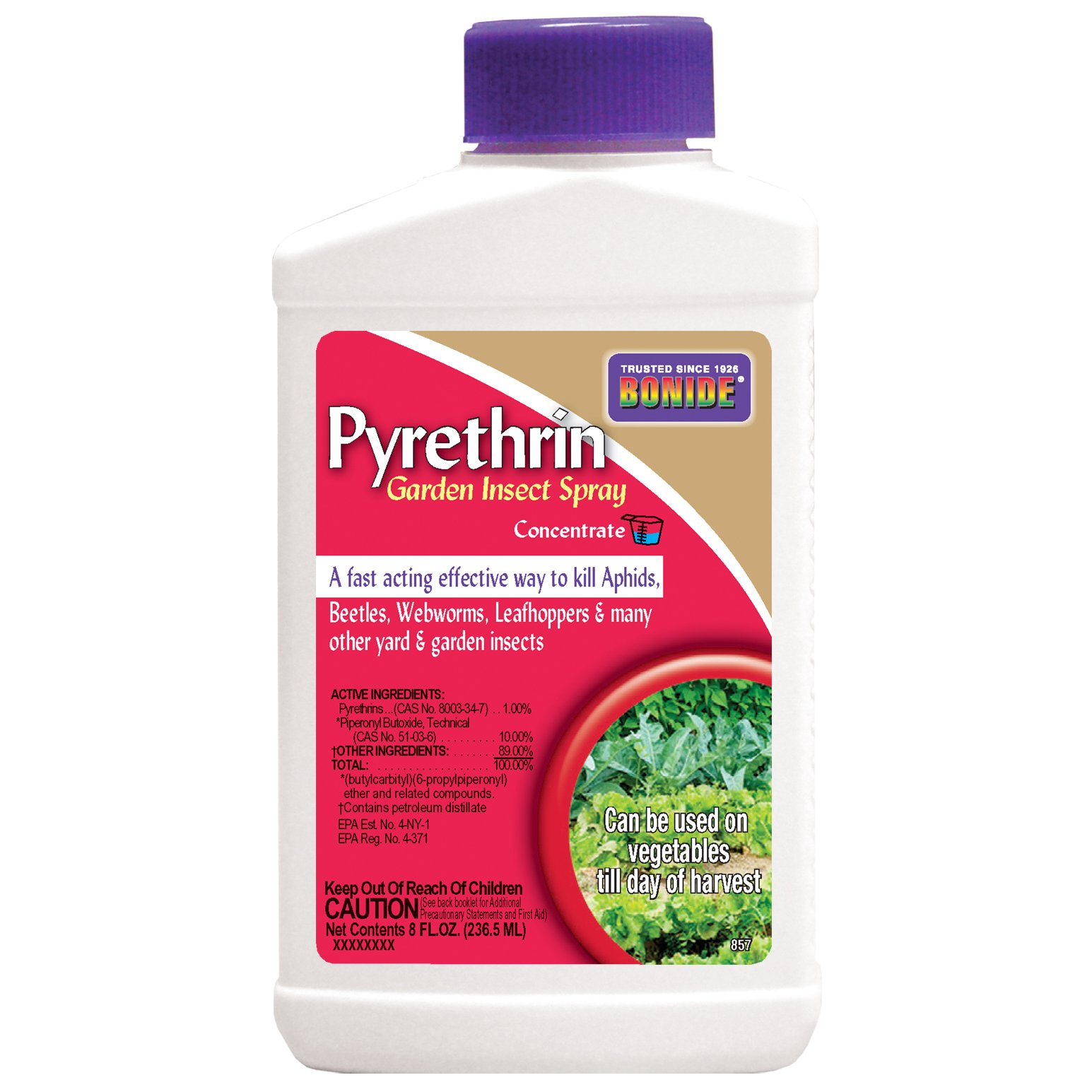 Bonide Products 857 Pyrethrin Spray Concentrate, 8-Ounce by Bonide