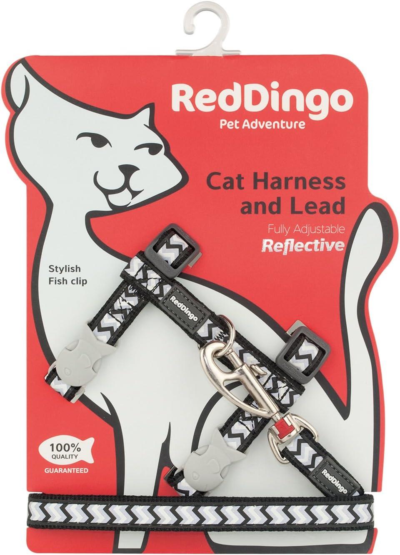 Red Dingo - Arnés Reflectante para Gato: Amazon.es: Productos para ...